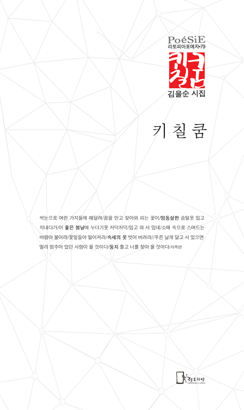 김을순시집표지2-0.jpg